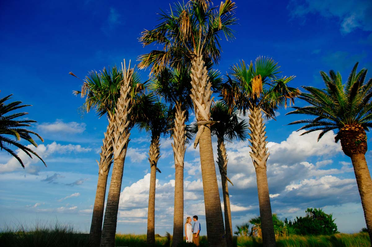 artistic portrait of couple with palm trees georgia golden isles