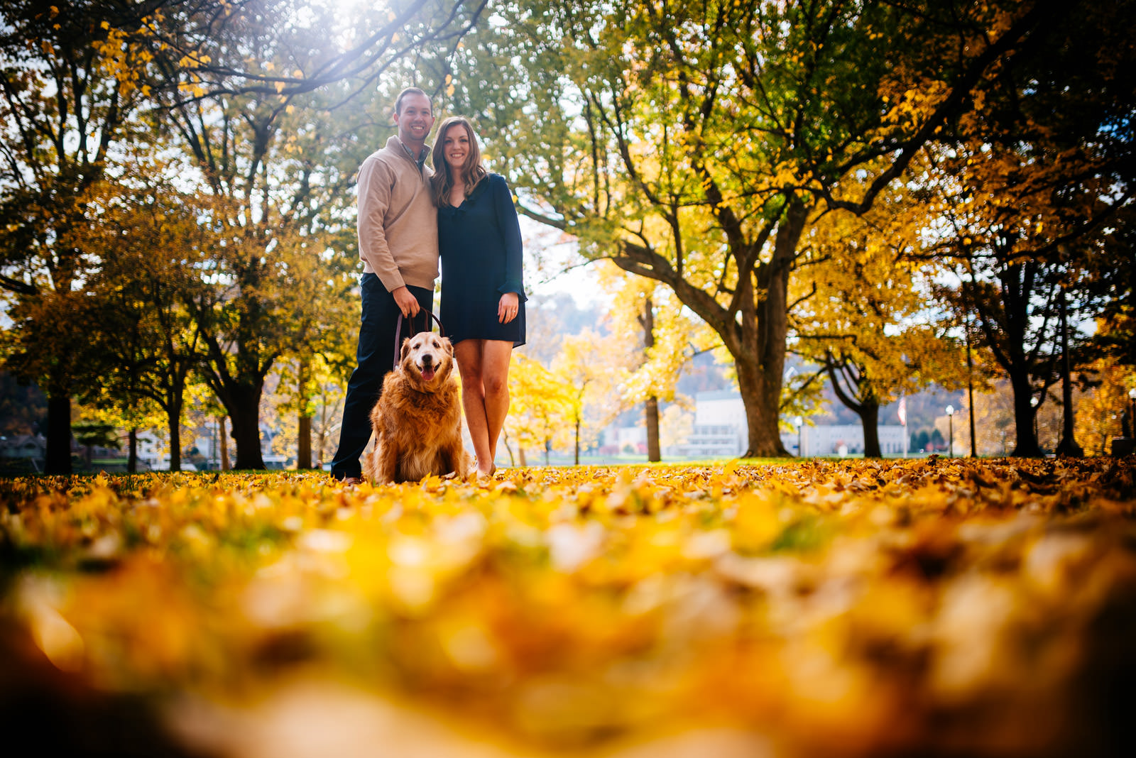 couple with goiden retriever fall charleston wv engagement session