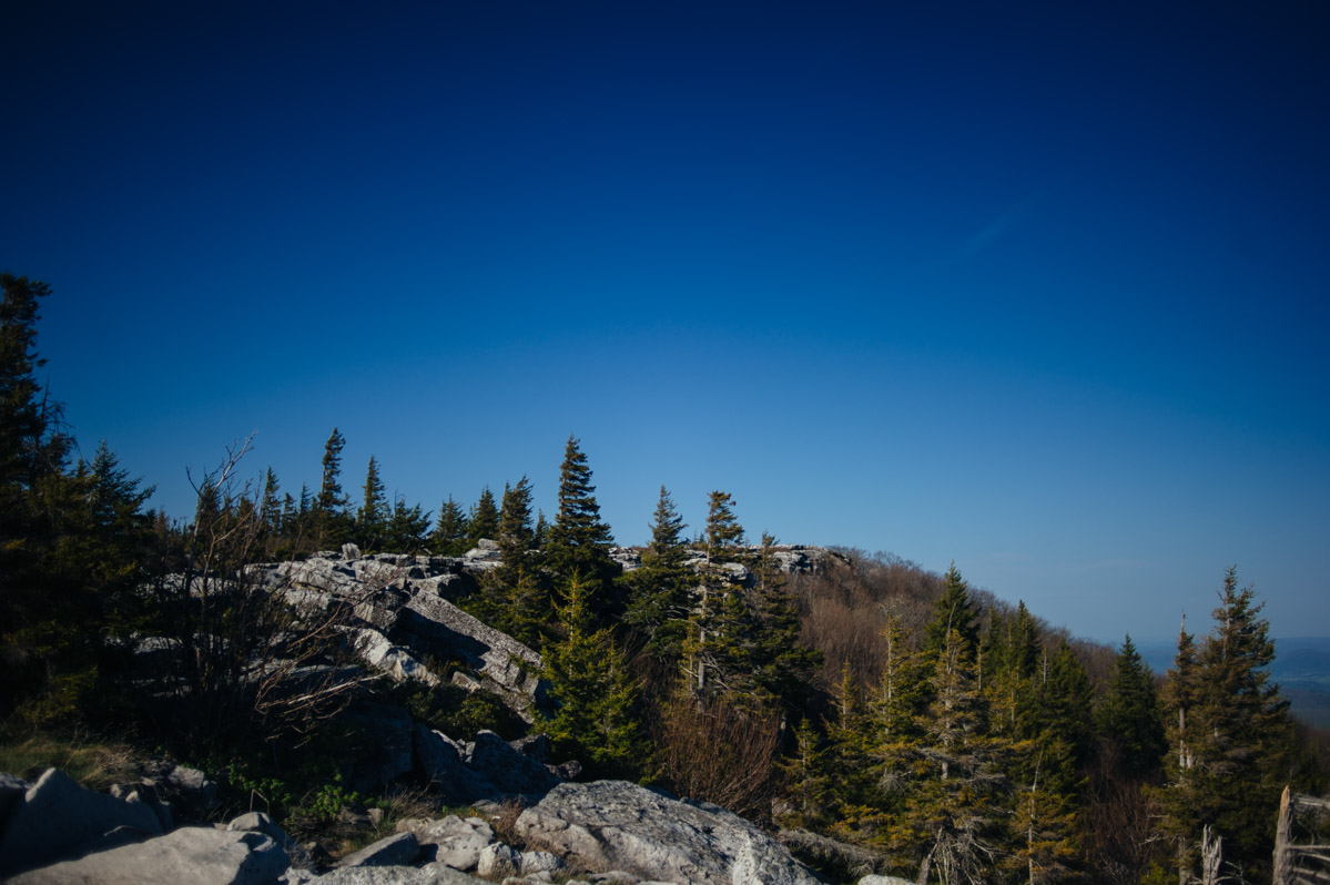 dolly sods wilderness bear rocks west virginia landscape photography by the oberports