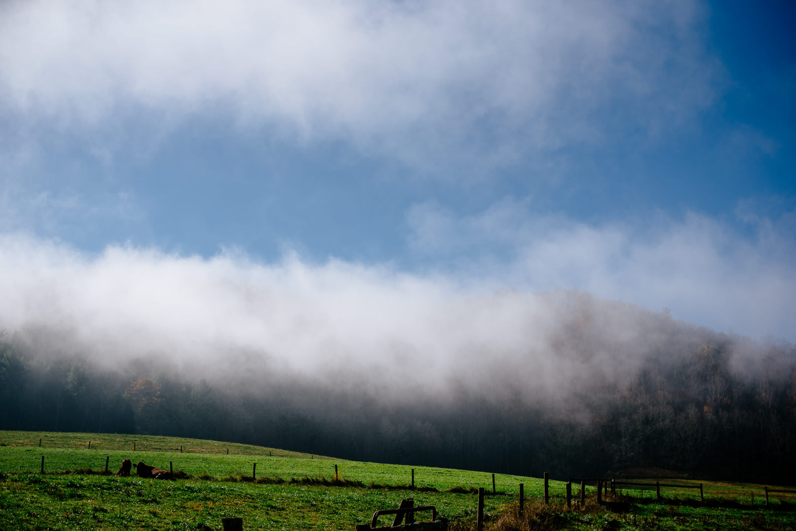 foggy mountains southern wv