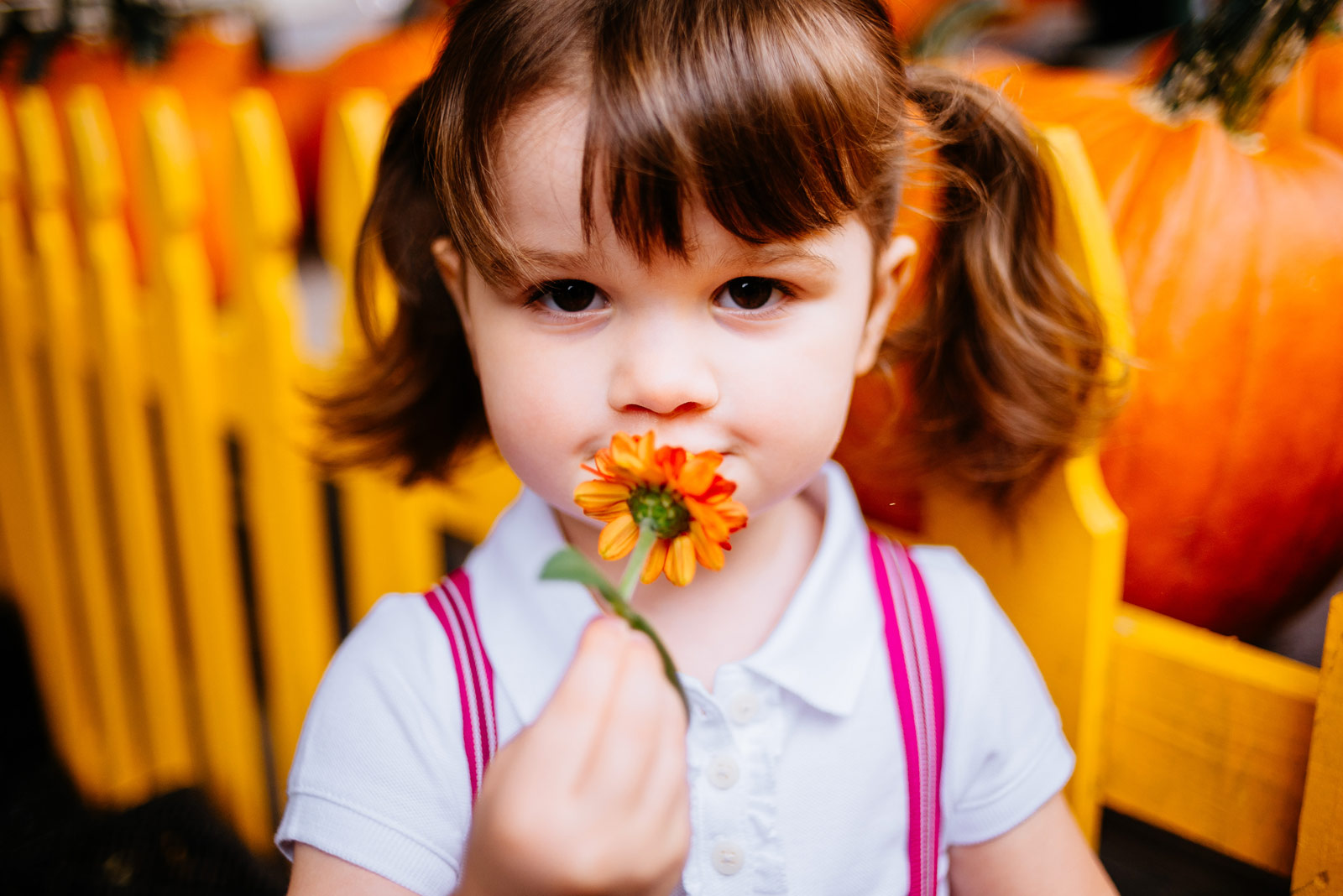 little girl smelling flower capitol market charleston wv
