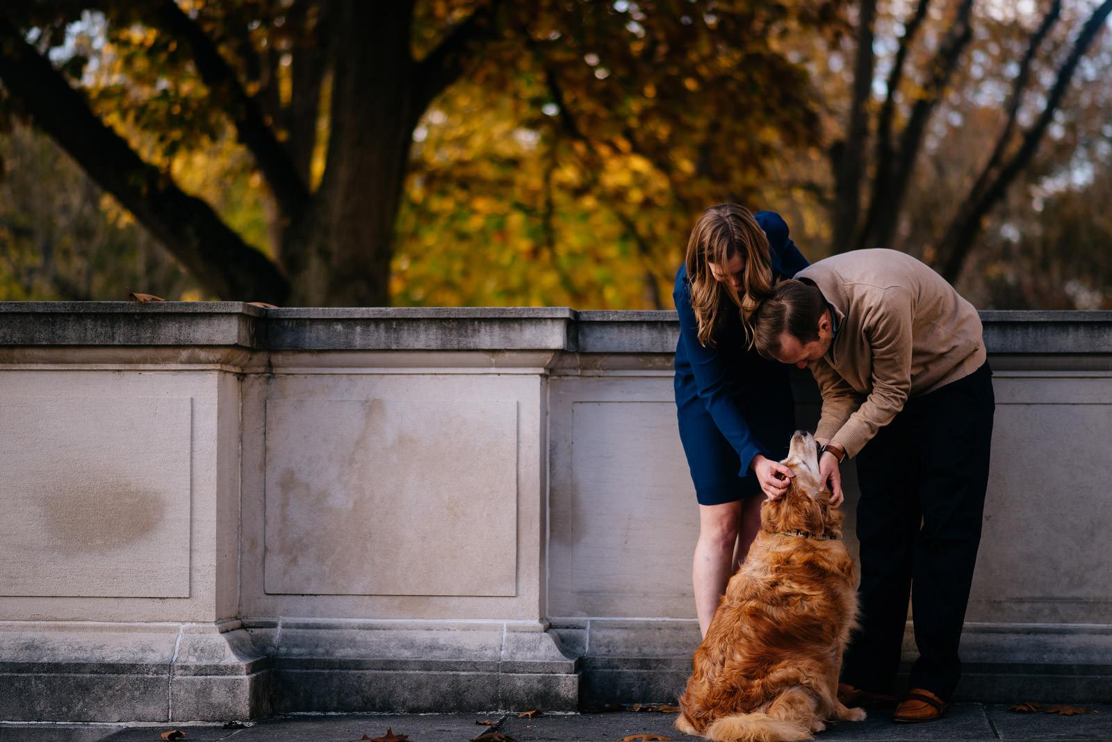 petting a good doggo