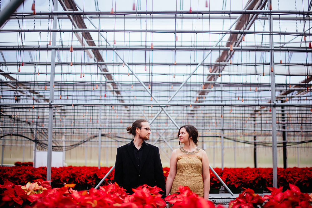 poinsettia greenhouse holiday engagement