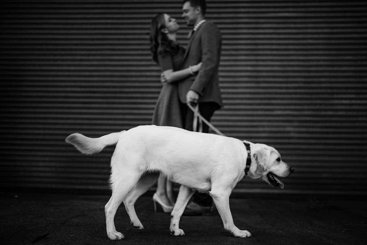 charleston wv engagement with dog