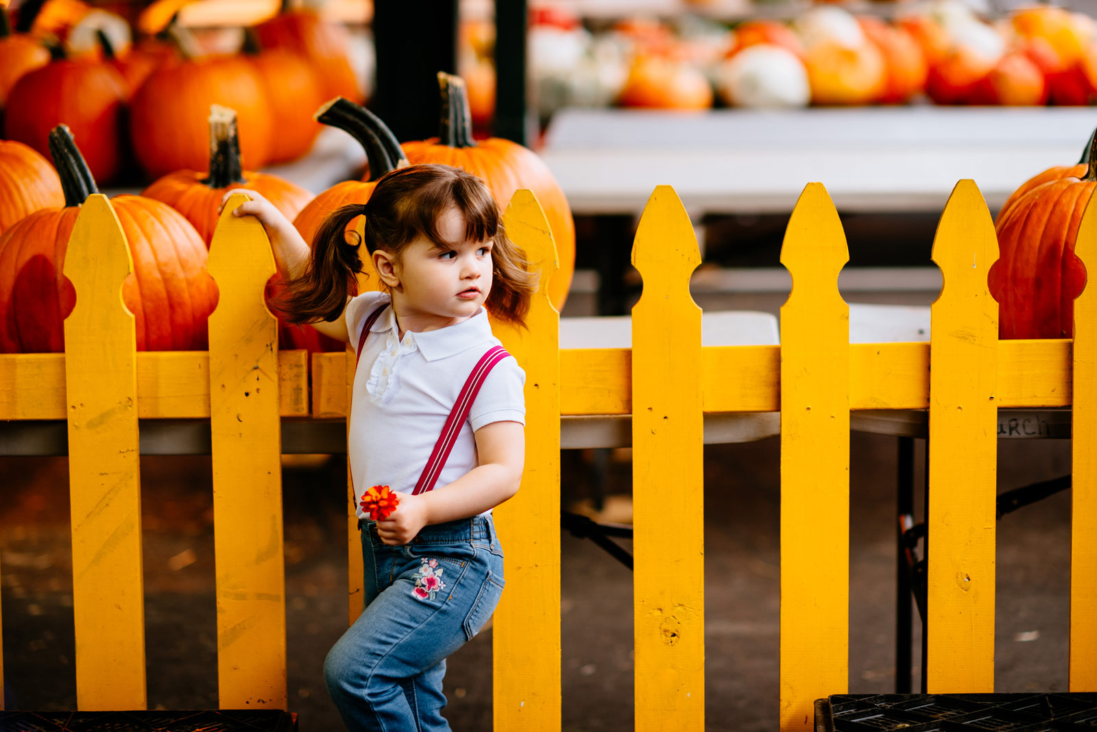 kid with pumpkins capitol market charleston west virginia