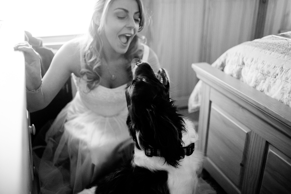 bride with dog on wedding day