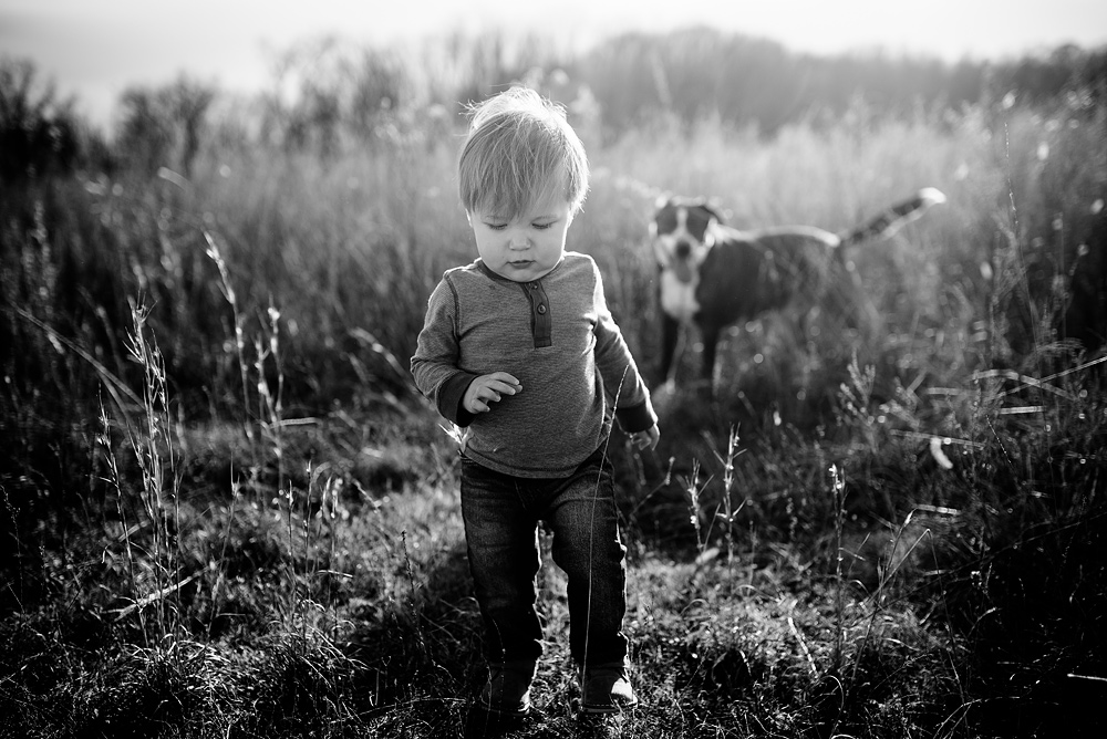 toddler with his best friend the dog