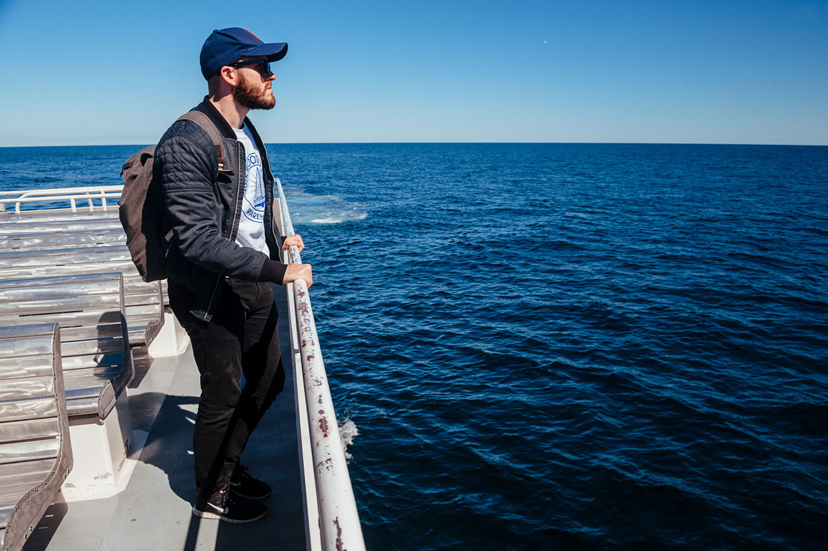 hyannis whale watching tour