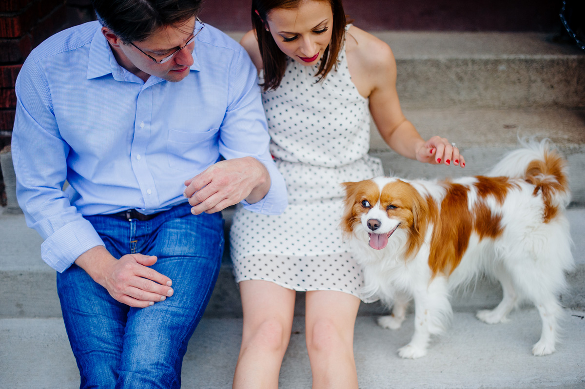 engagement pictures with dogs
