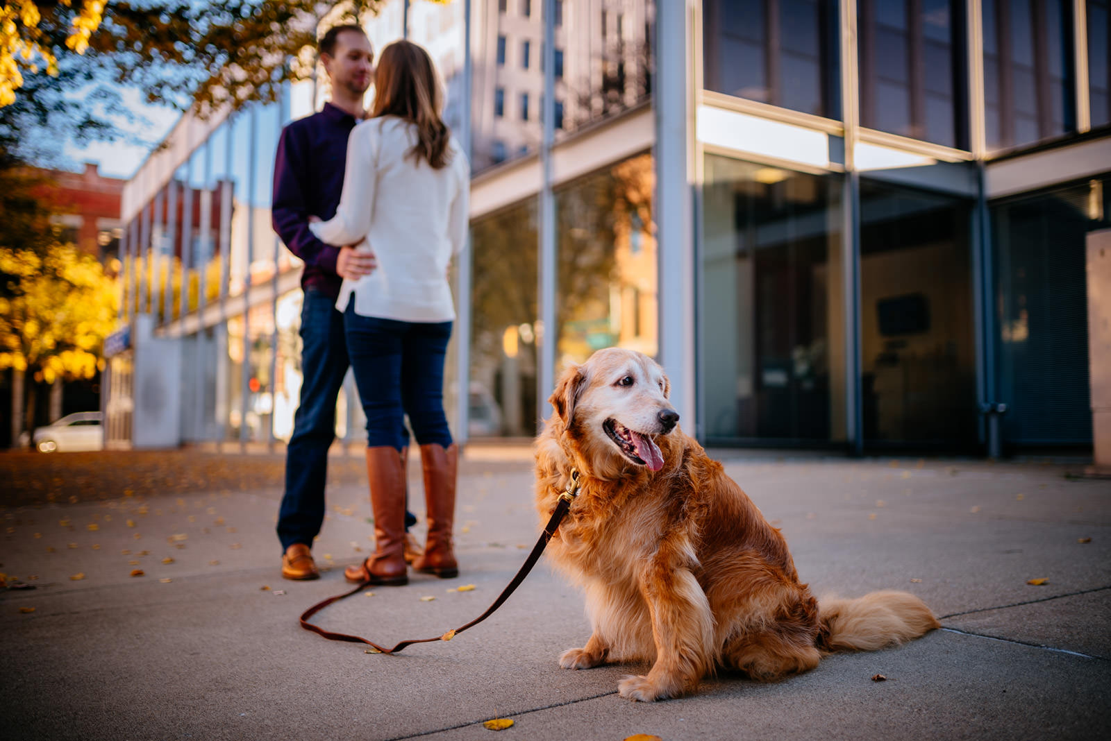 fall charleston wv engagement session with dog