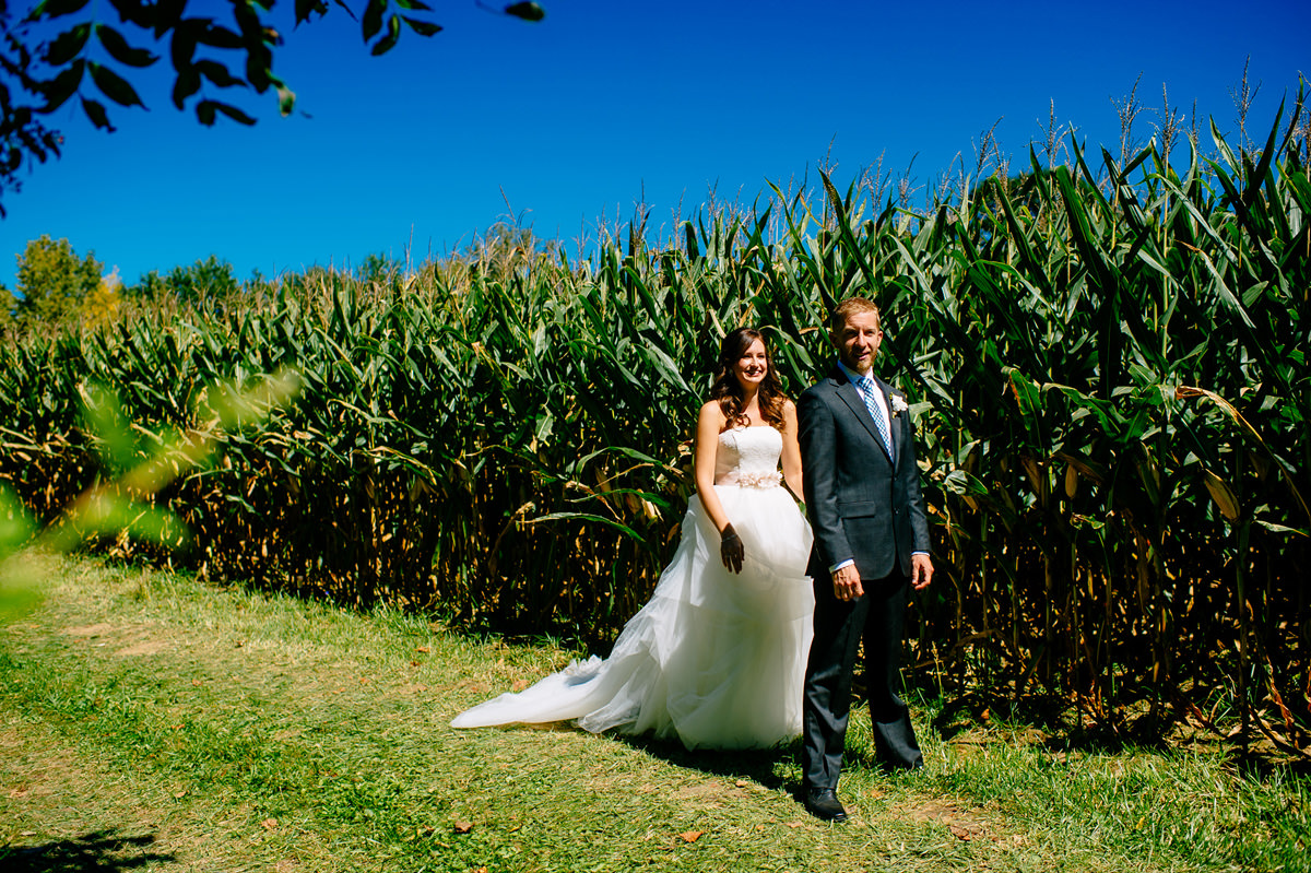 first look by a cornfield
