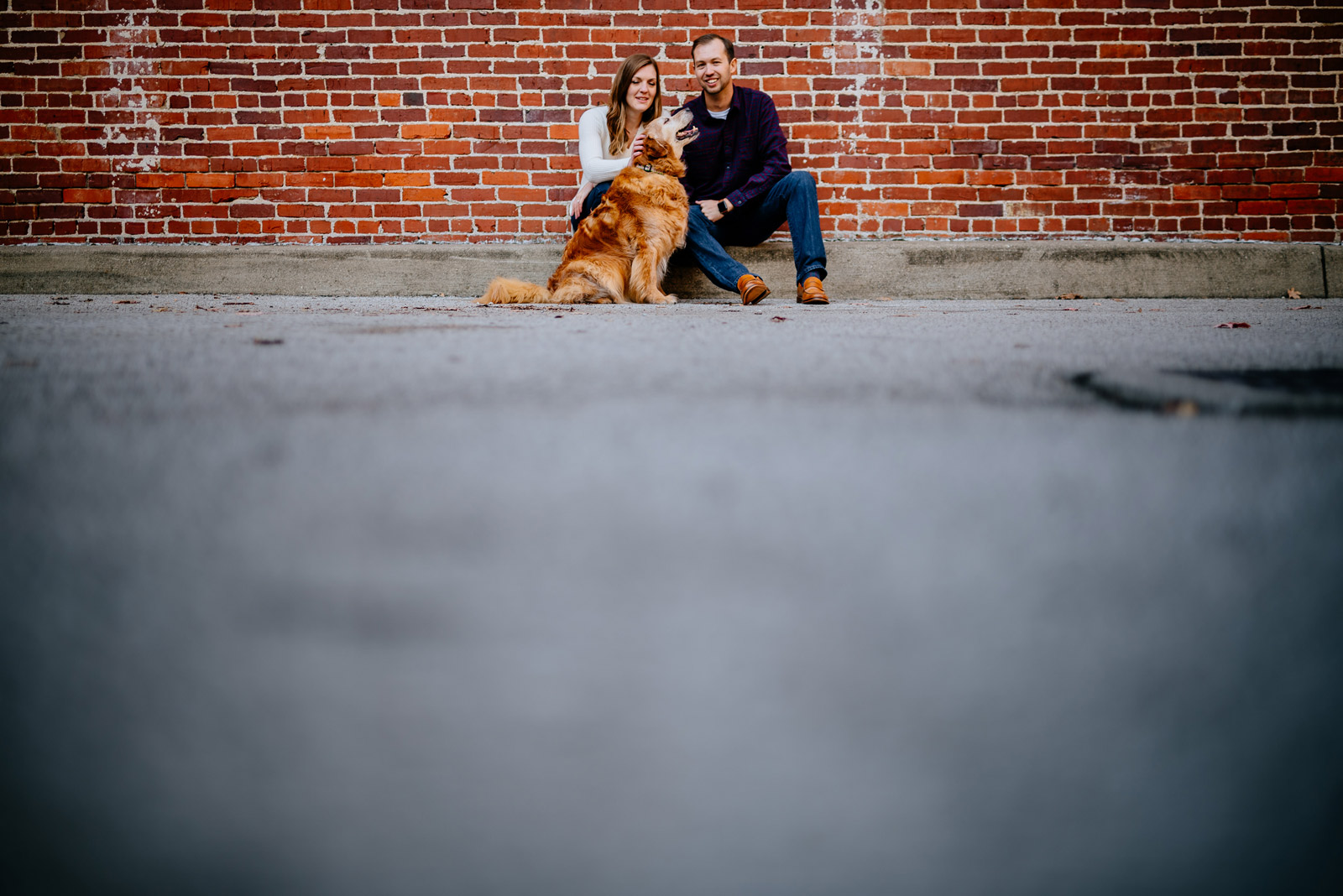 couple petting dog downtown charlest n west virginia