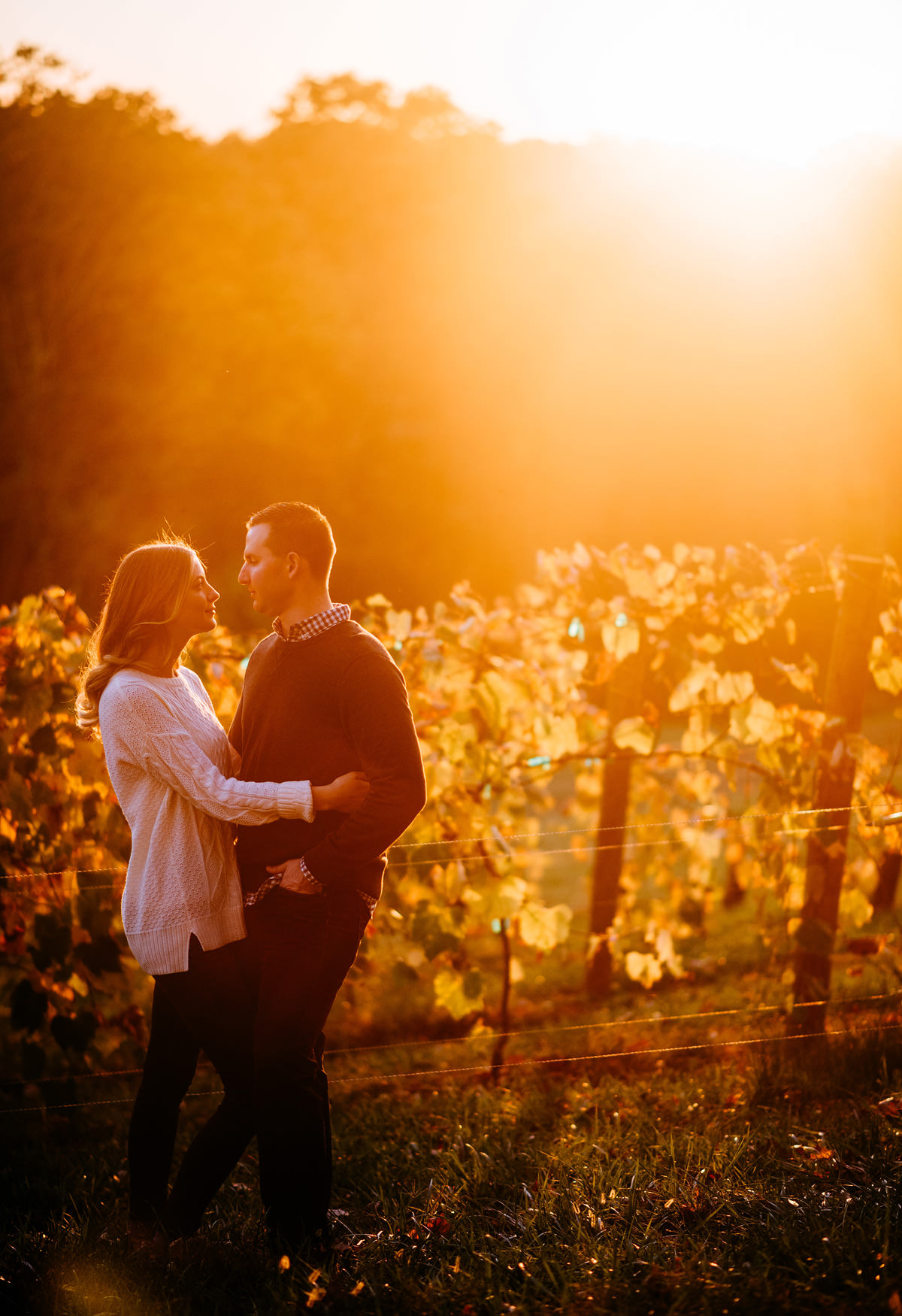 vineyard engagement shoot in ohio by wv photographers the oberports