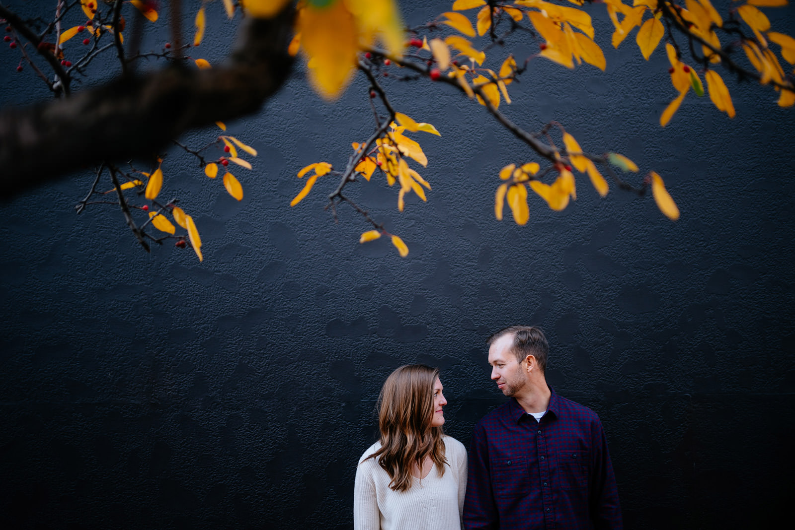 under the leaves fall charleston wv engagement session