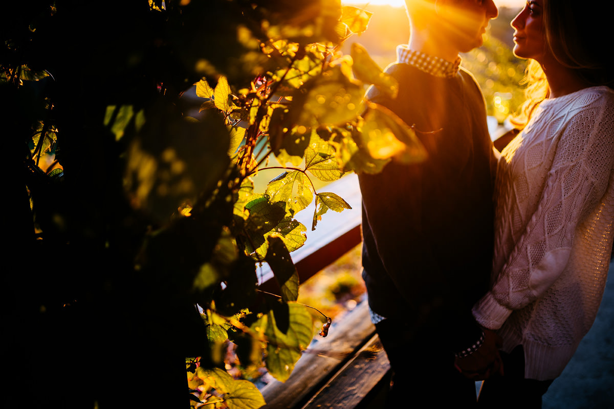 golden hour engagement portraits at a vineyard