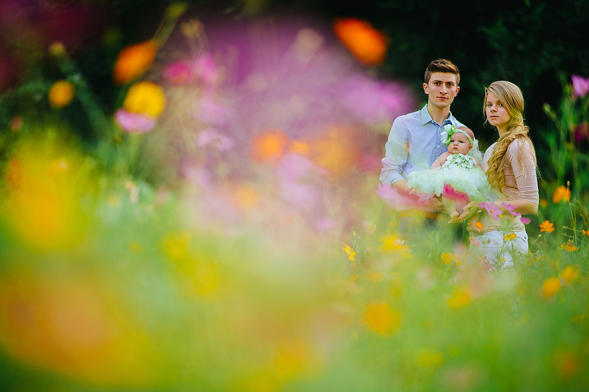 family portraits with baby in field of flowers by pittsburgh photographers the oberports