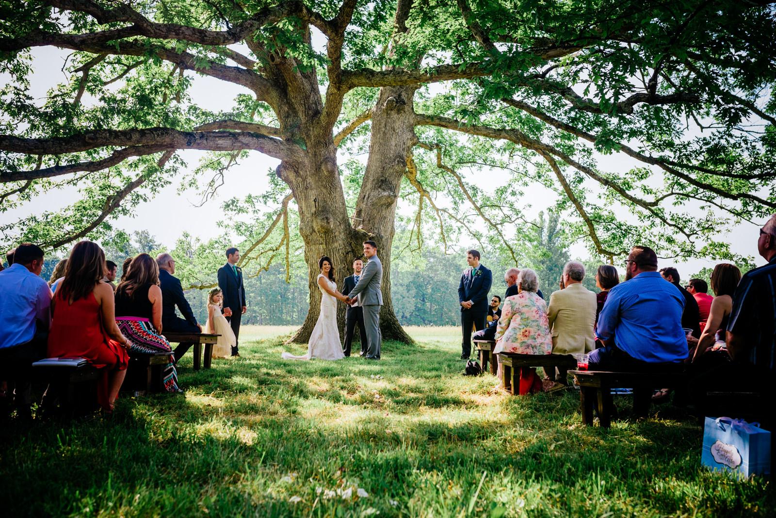 ceremony under white oak tree gaines estate fayetteville wv wedding