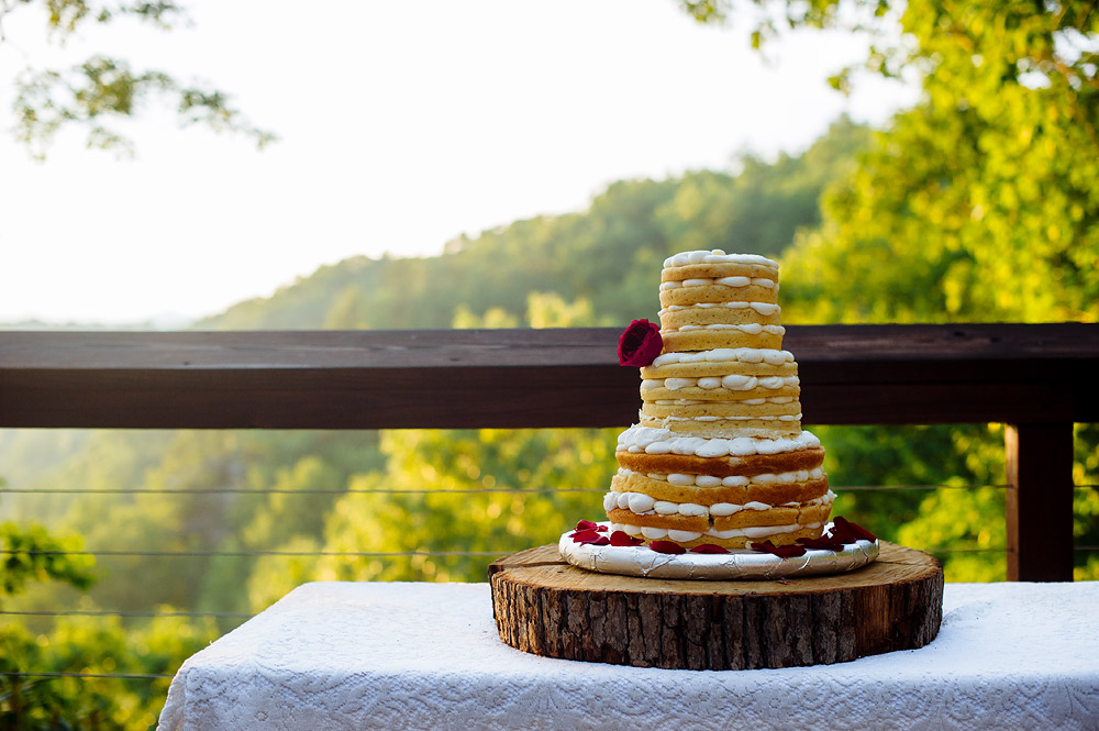 naked lemon poppyseed cake