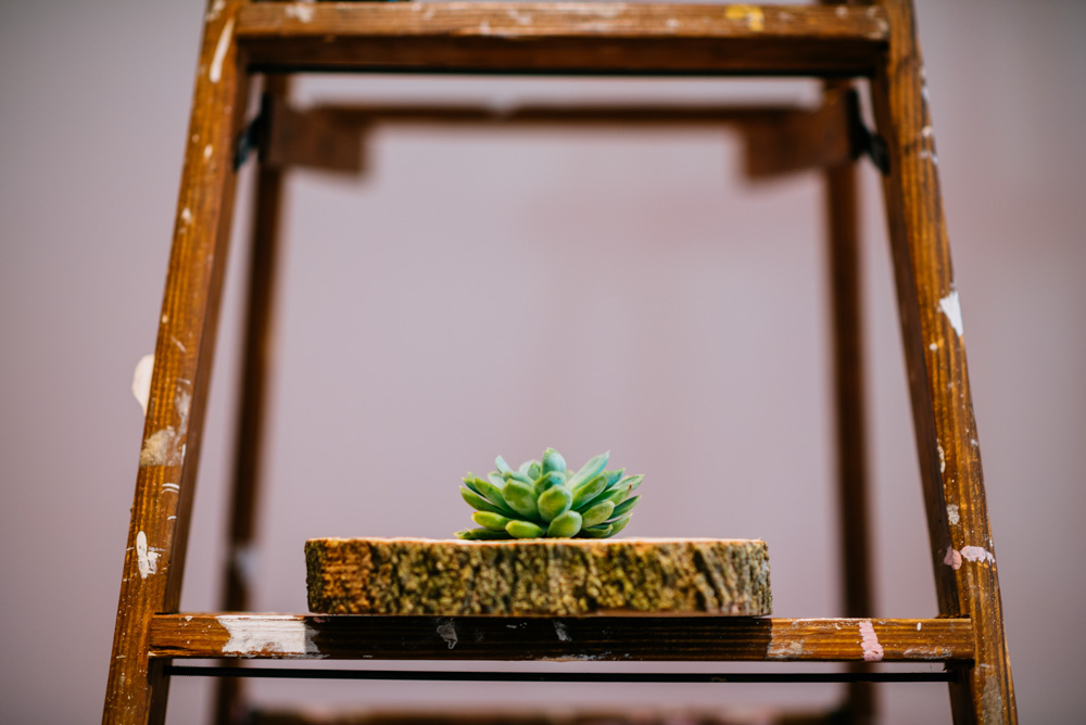 wedding decor ladder and succulent