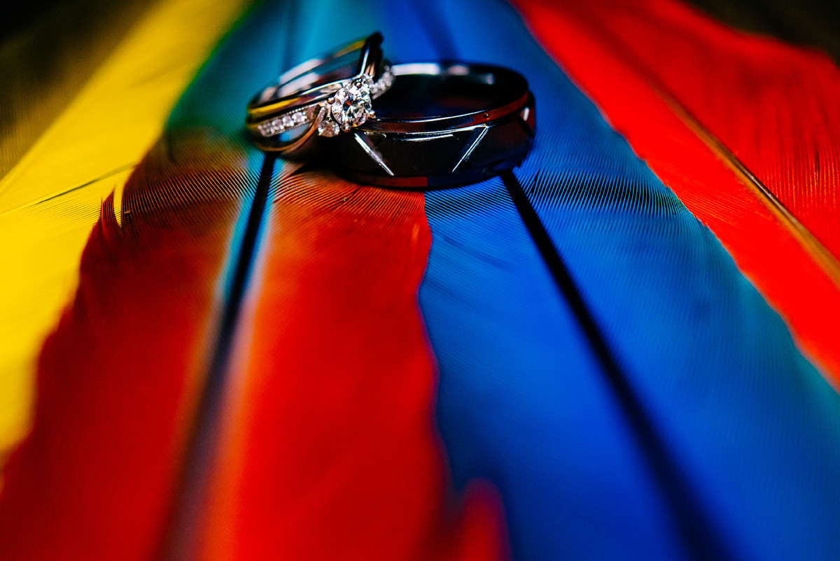 ring shot with parrot feathers by the oberports
