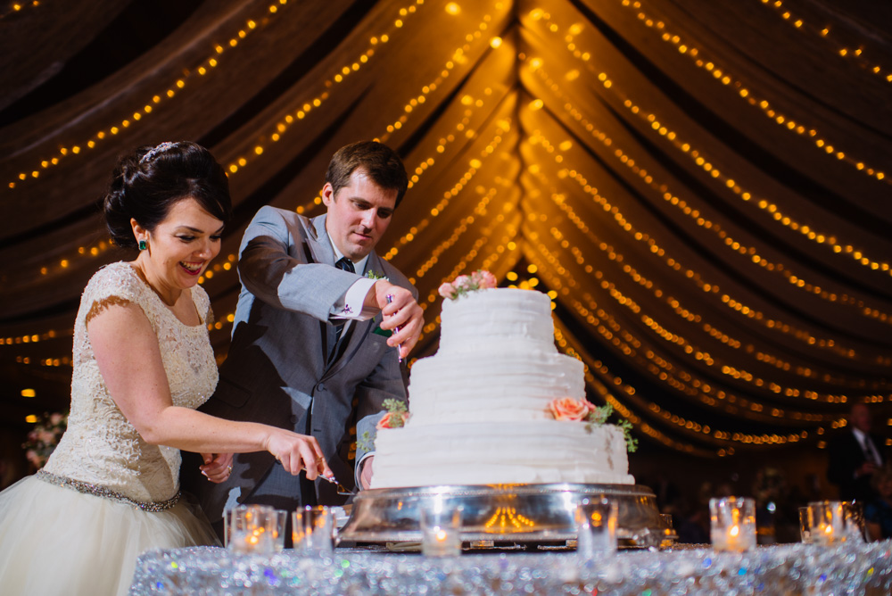 bride groom cutting cake glessner ballroom oglebay wedding moments by wv photographers the oberports