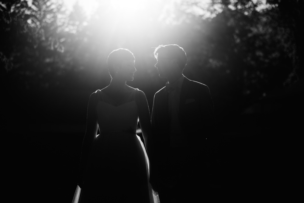 artistic wv wedding portraits