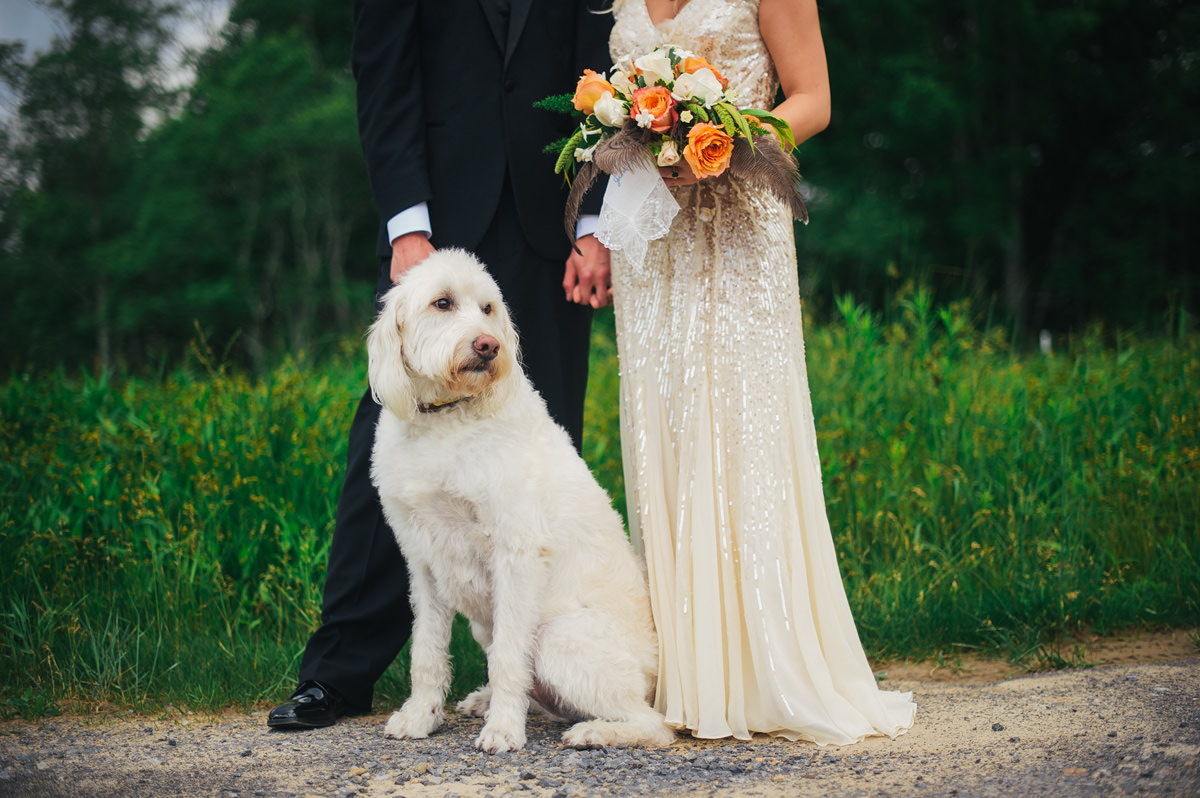 wedding day portrait with dog