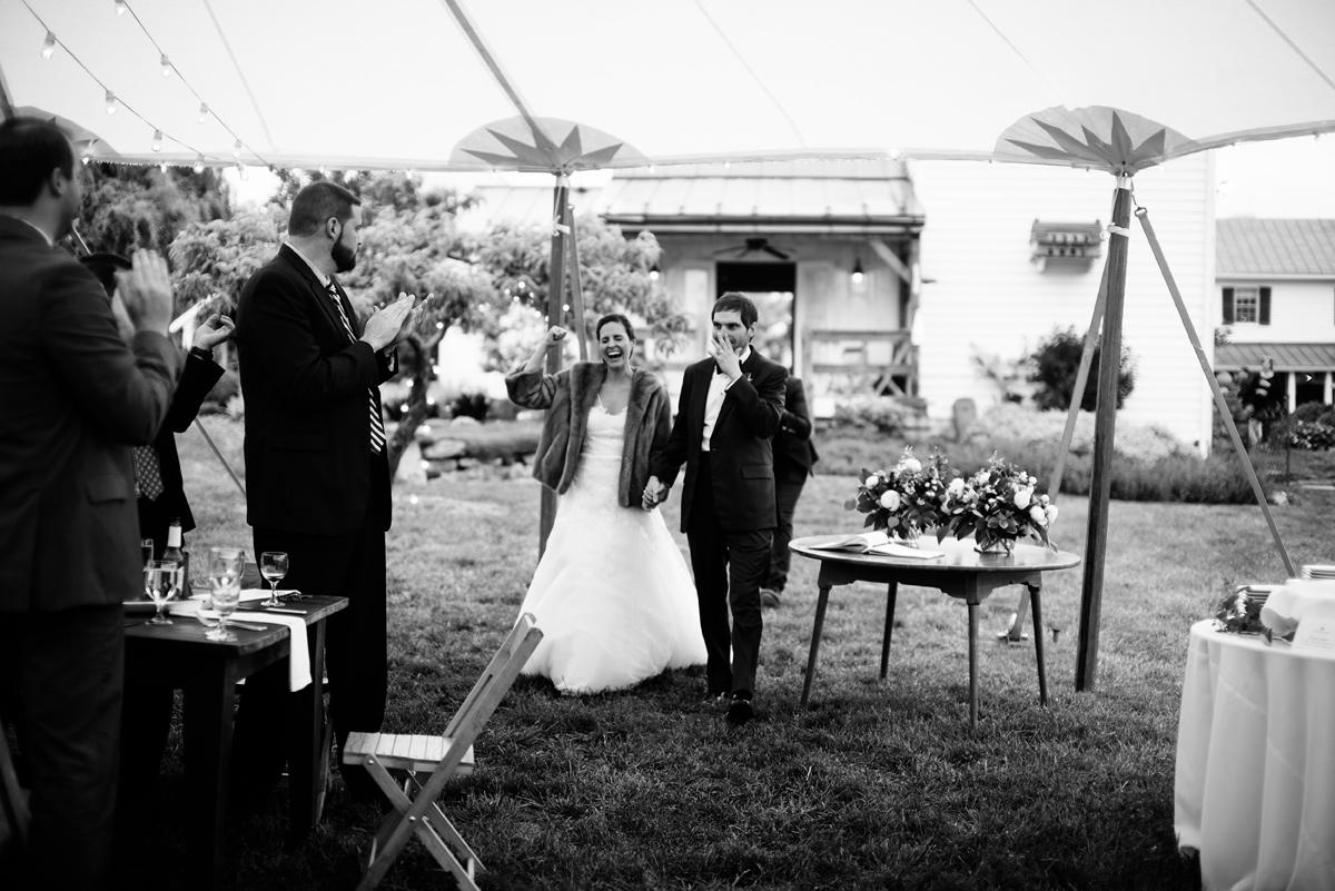 pharsalia virginia wedding bride and groom reception entrance