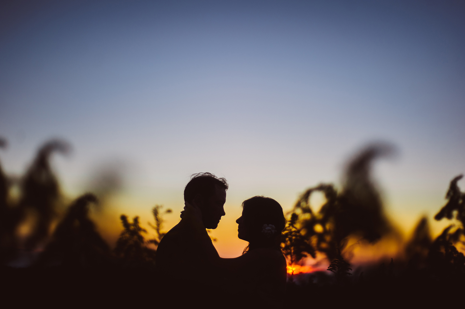 beautiful bride and groom silhouette at sunset at fallingwater