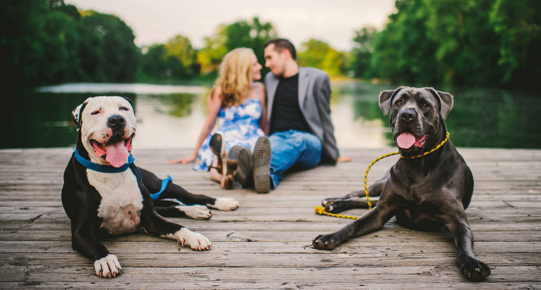 junebug best of the best engagements