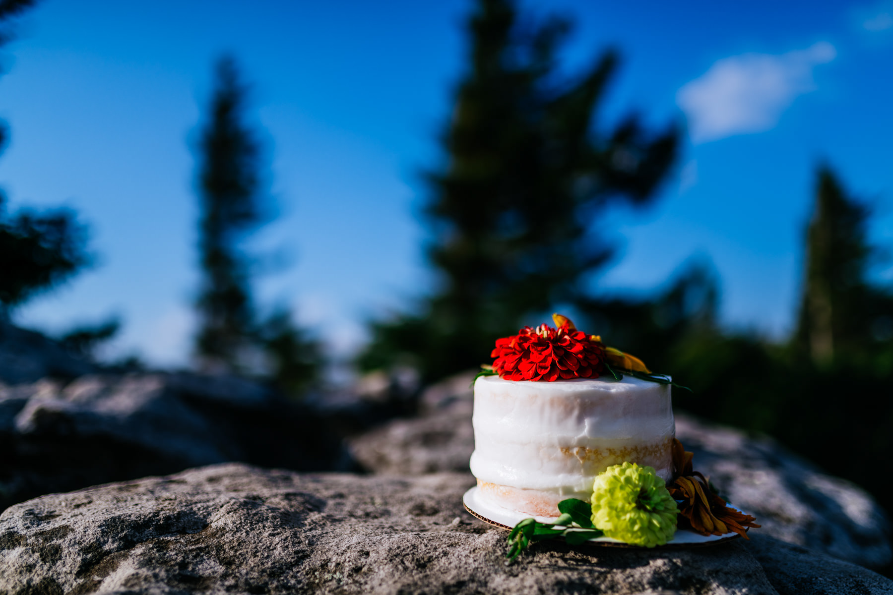 wedding cake on bear rocks