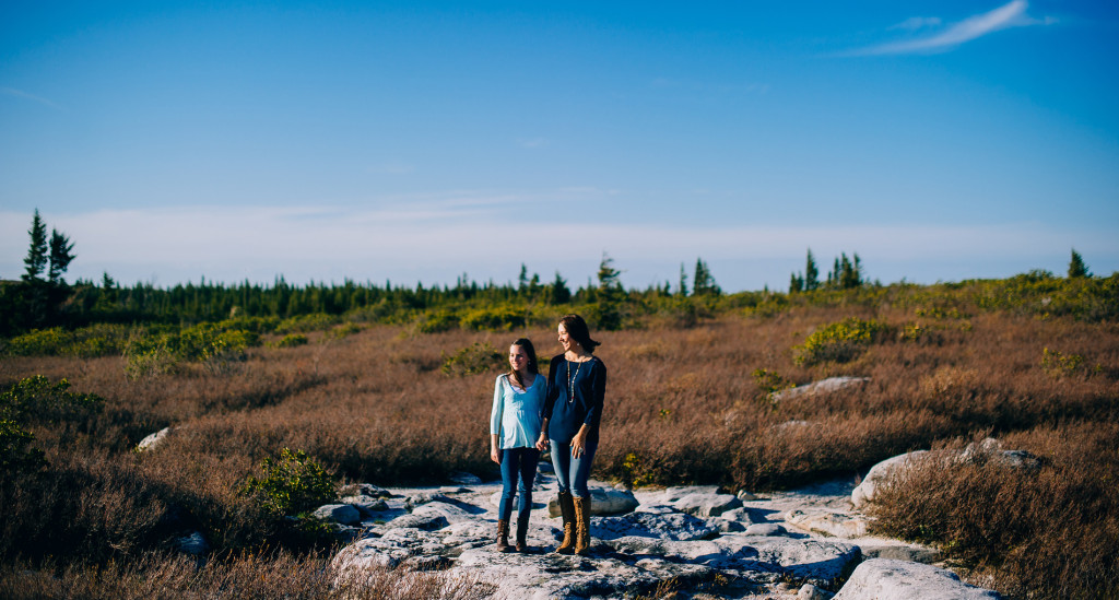 scenic portraits in west virginia dolly sods wilderness