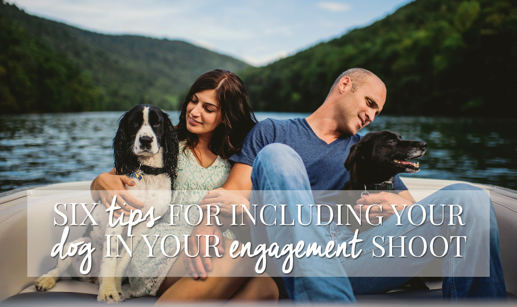 tips for engagement sessions with dogs