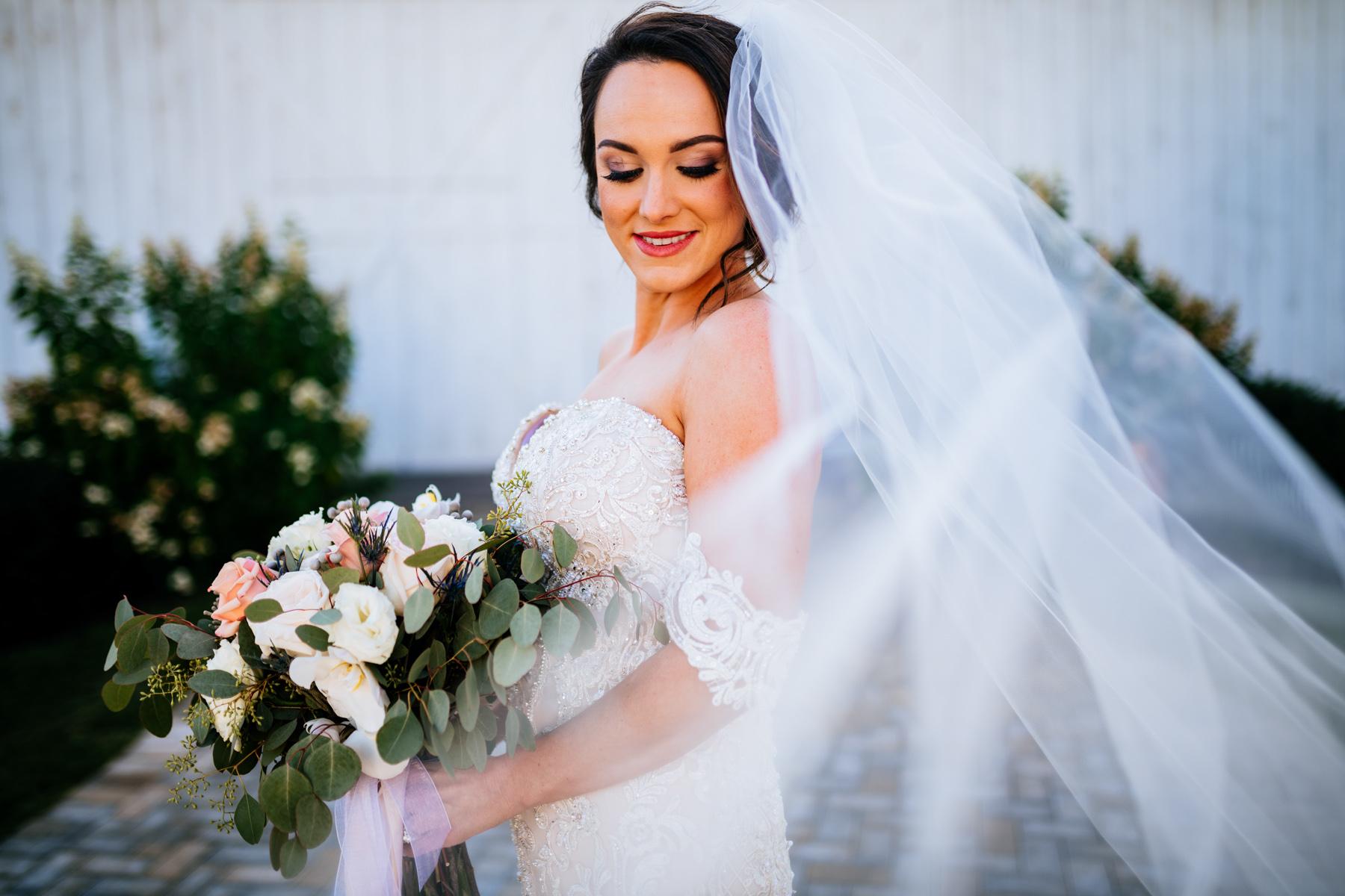 bridal portrait with flowing veil