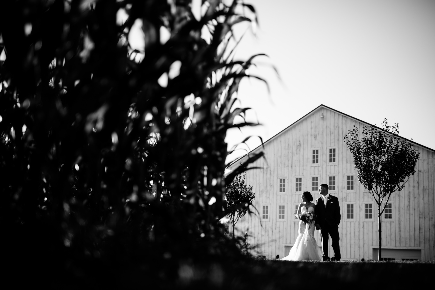 bride and groom in front of white barn at lucas farm wedding