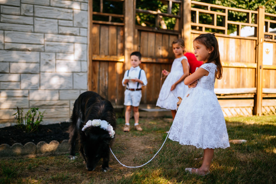 little girl with wedding dogs