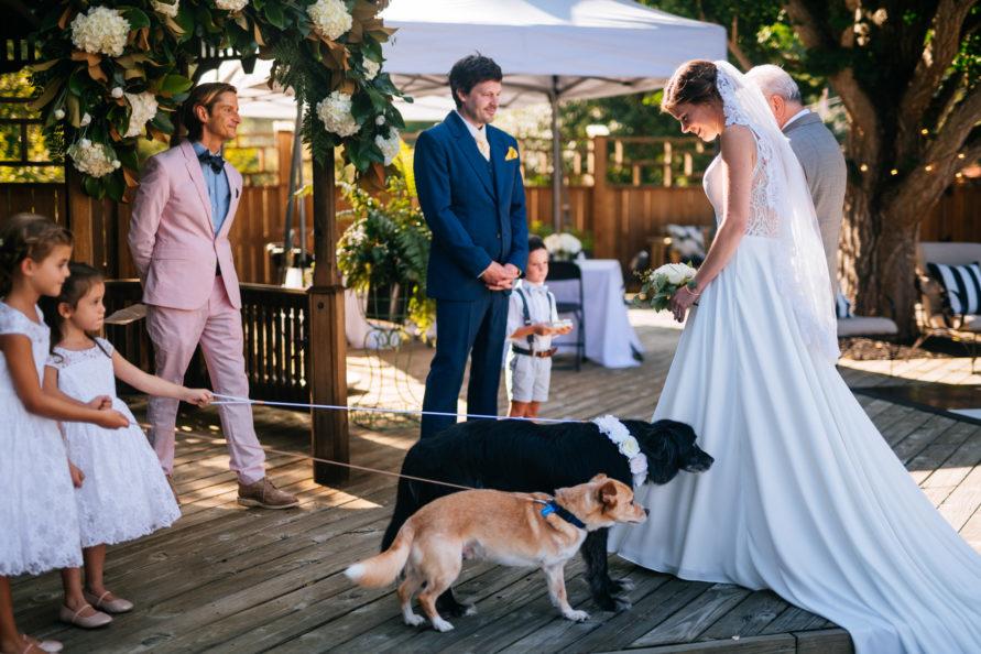 bride getting married in wv backyard