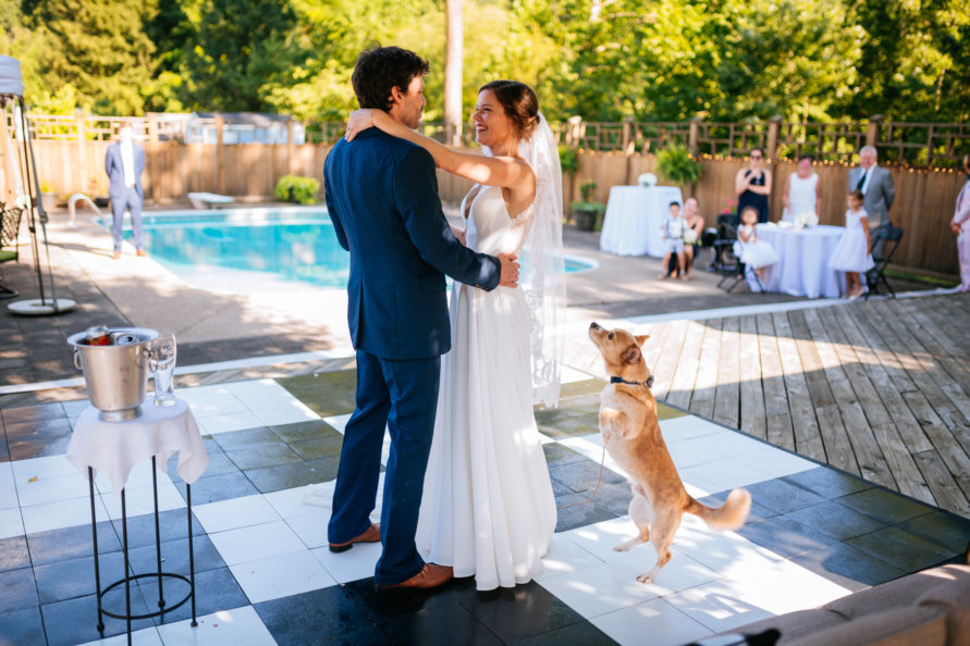 bride and groom first dance with  dog