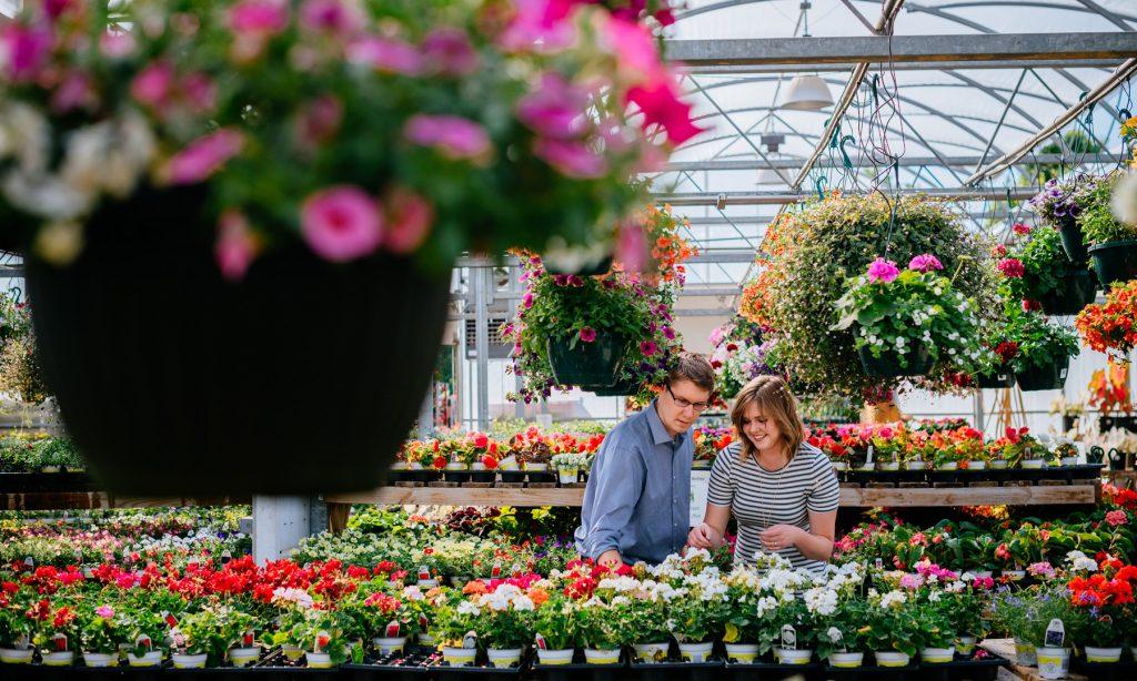wv greenhouse engagement pics