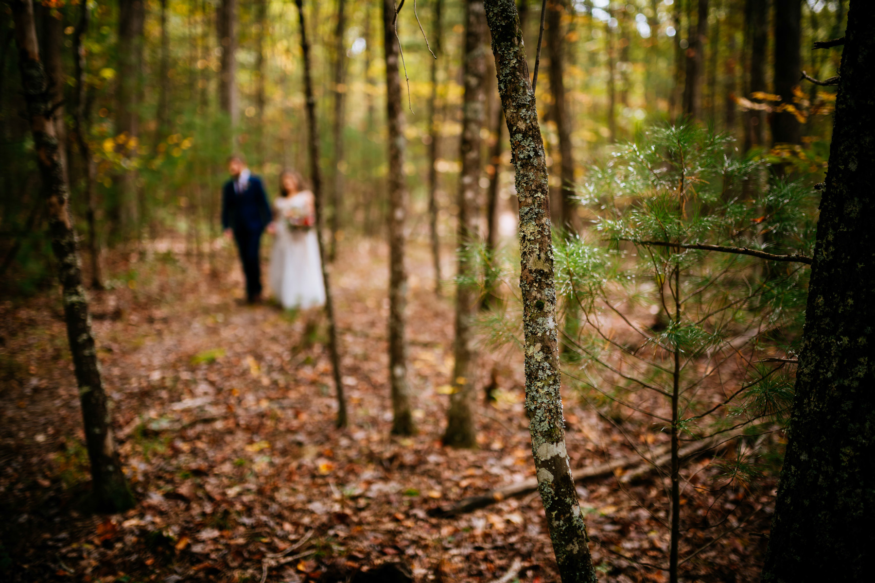 greenbrier state forest wedding