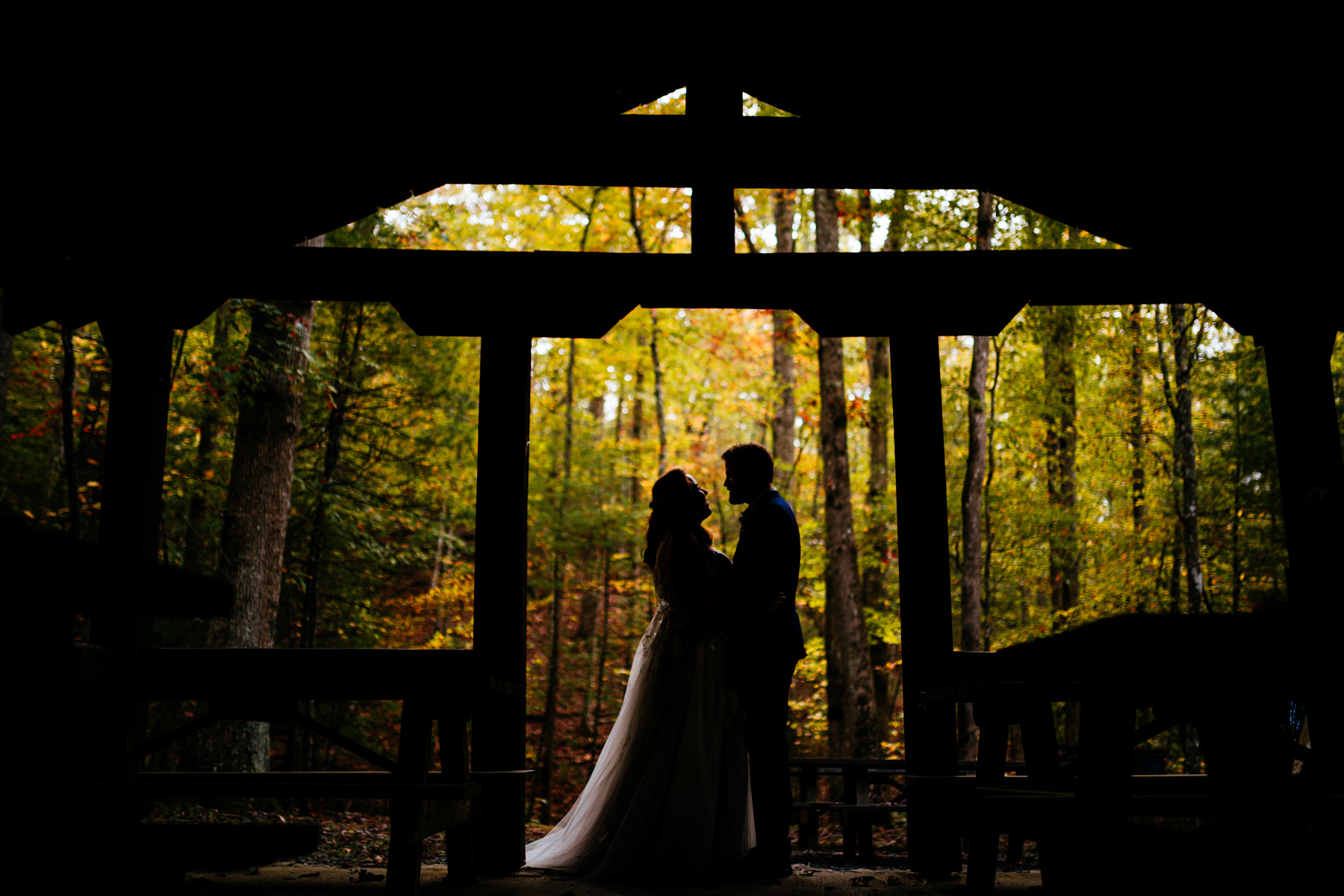 silhouette bride and groom in forest